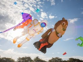 Redcliffe KiteFest - Domestic and International Kites
