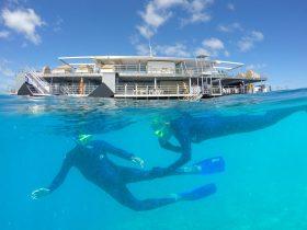 Snorkelling at Reefworld
