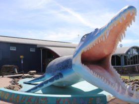 Meet the pliosaur located outside the Kronosaurus Korner