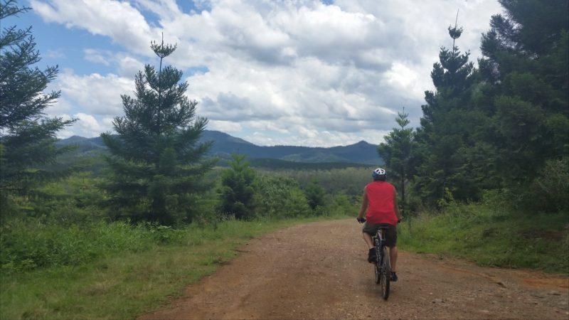 Ride On Mary...Kayak and Bike Bush Adventures