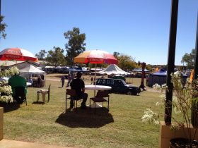 Rockhana Gem and Mineral Festival
