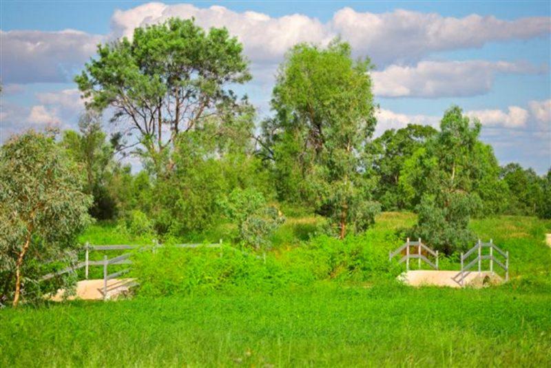 Roma Bush Gardens