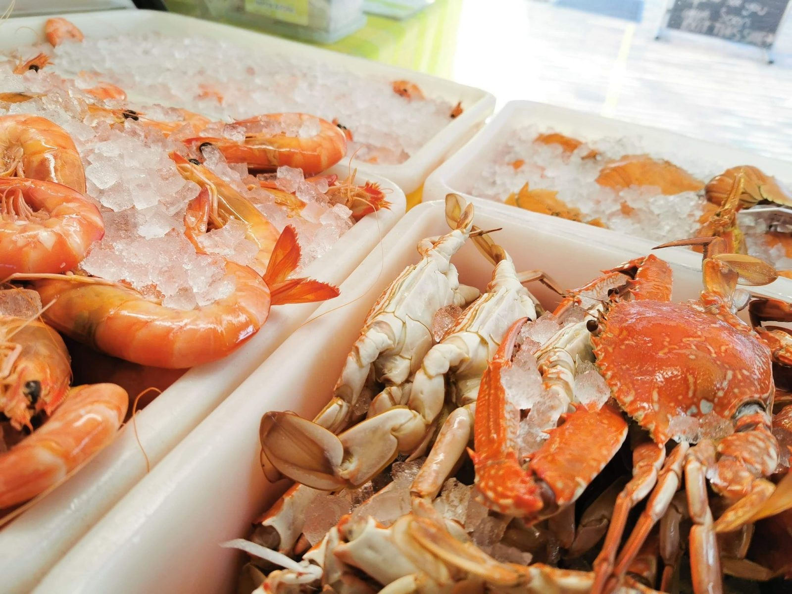 A range of our local trawler's catch of prawns, bugs and sand crabs.