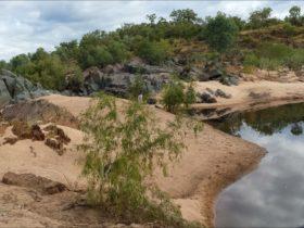 Gilbert River, Rungulla