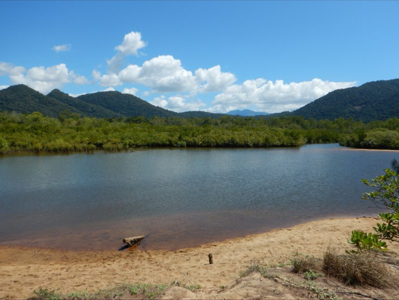 Estuary with mangroves and mountains in background.