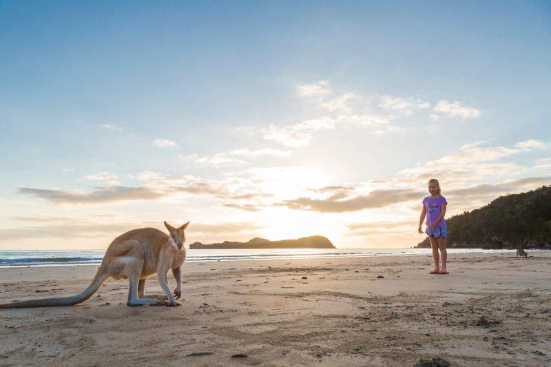 Small girl with kangaroo on the beach