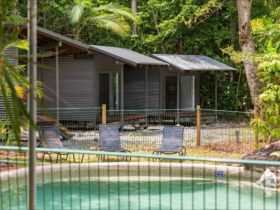 Safari Lodge Cape Tribulation
