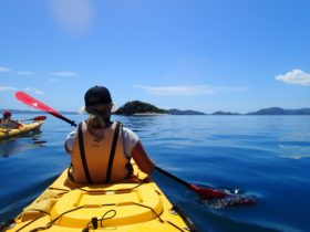 Half day paddle to White Rock
