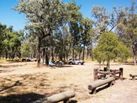 Camp and vehicle set up under trees with mown grass in foreground.