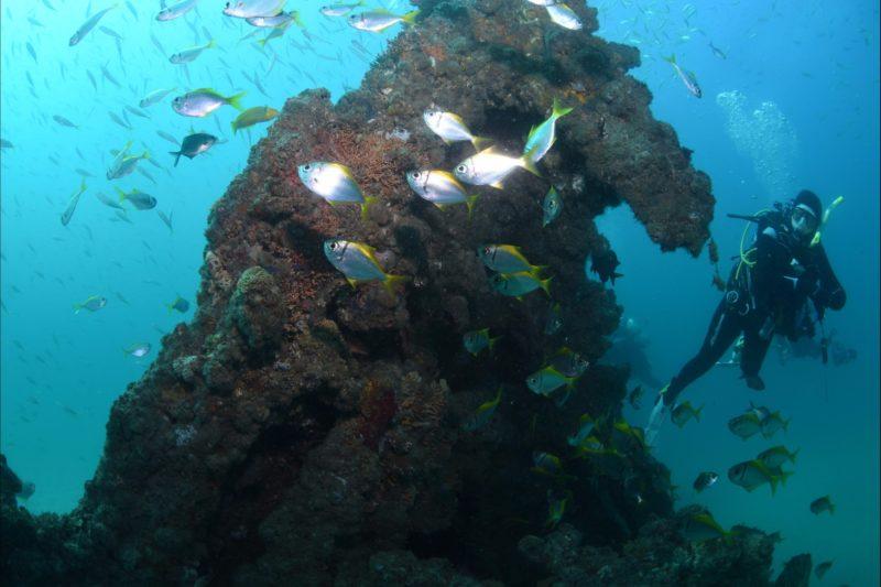 Scottish Prince Dive Site