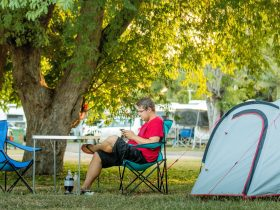 Secura Lifestyle Magnetic Gateway Shady Camp Sites