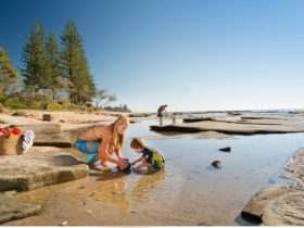 Shelly Beach Caloundra, Sunshine Coast