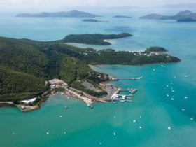 Aerial view of Shute Harbour