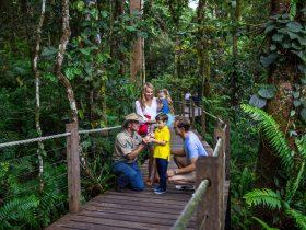 Ranger guided tour