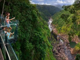 Families enjoying the view of Barron Falls at The Edge Lookout at Skyrail Rainforest Cableway