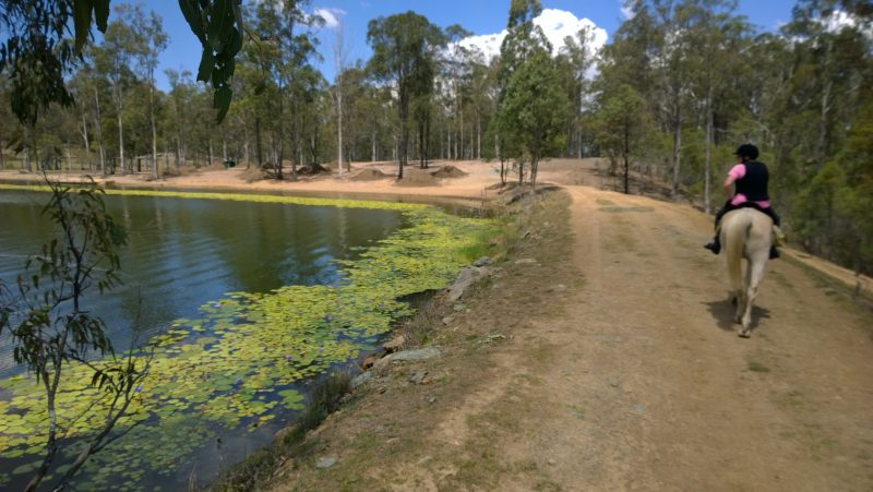 Peaceful riding beside their beautiful lake
