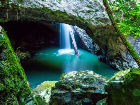 Springbrook, Natural Bridge
