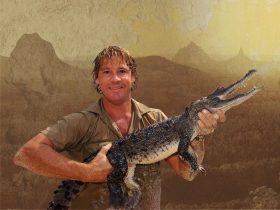 Steve Irwin Day at Australia Zoo