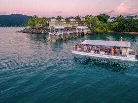 Sundowner Cruises Airlie Beach Whitsunday sunset cruise