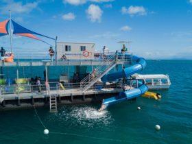 Sunlover Reef Cruises waterslide on the Great Barrier Reef