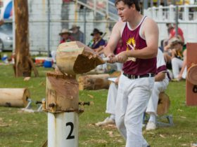 Sunshine Coast Agricultural Show