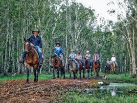 Horse back riding on the Fraser Coast