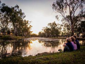 After you've check into Swagsman Motor Inn, take a walk along the Dogwood Creek walking track