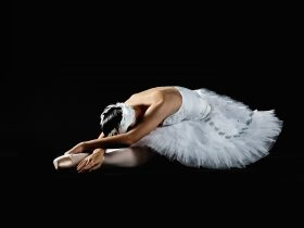 Presented by Ballet Theatre Queensland