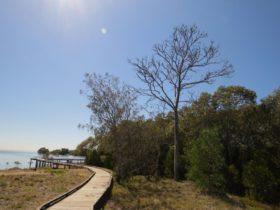 Tabbil-ban Dhagun Mangrove Boardwalk