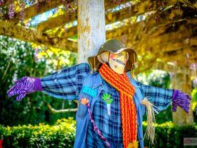 Scarecrow Festival Tamborine Mountain