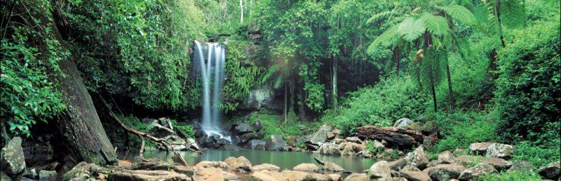 Waterfalls cascading into pool, Tamborine National Park