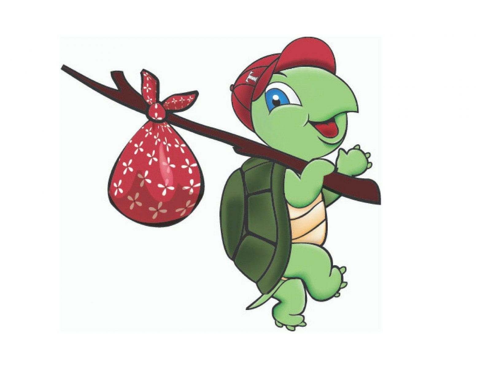 Tasman Turtle