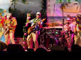 The Australia Beach Boys Show