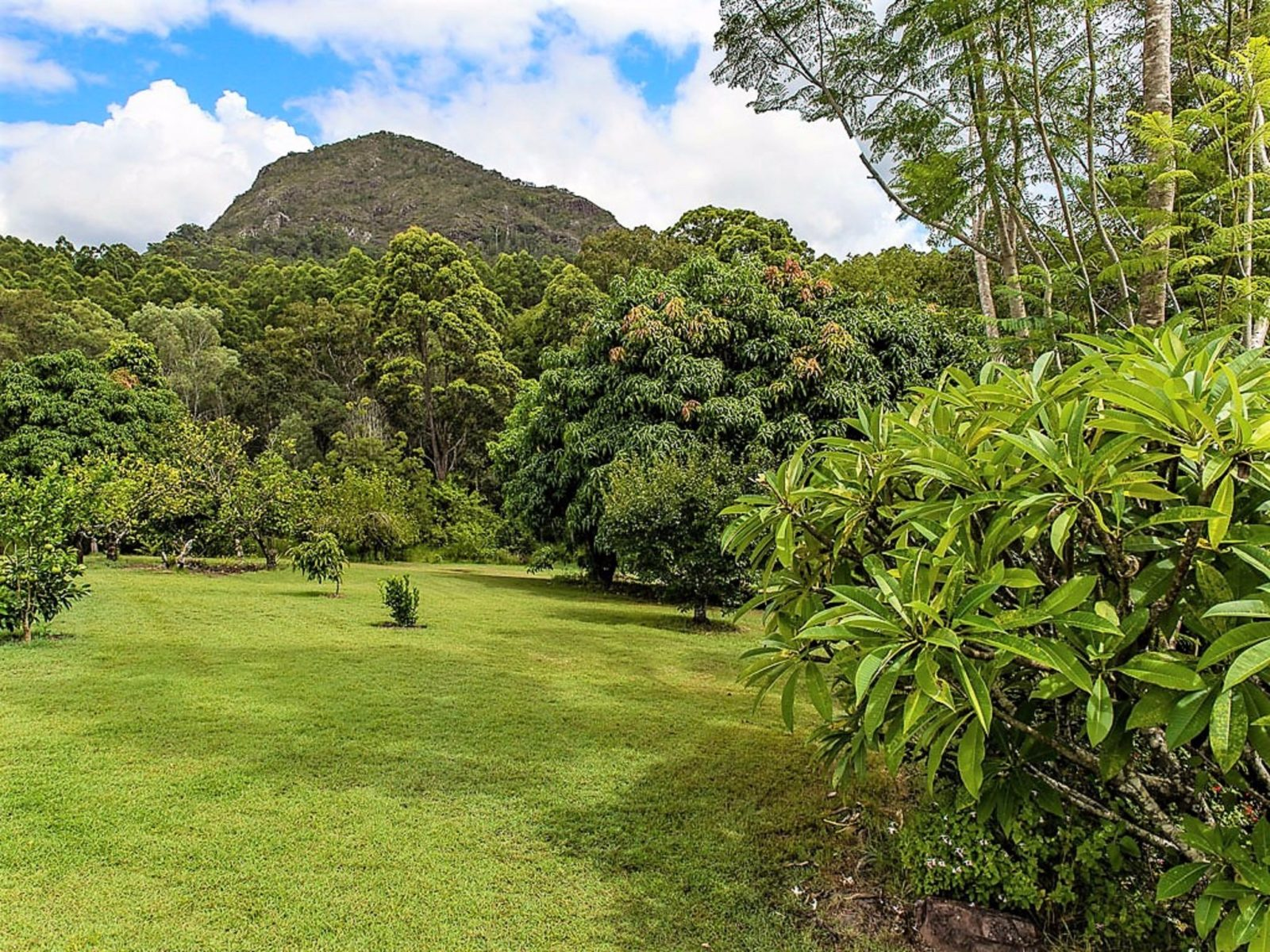 The two acre property with views to Mt Cooran