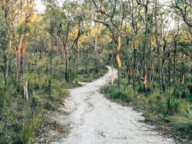 The Don and Christine Burnett Conservation Area