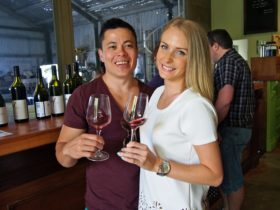 Wine tasting at Witches Falls on the Vino Bus
