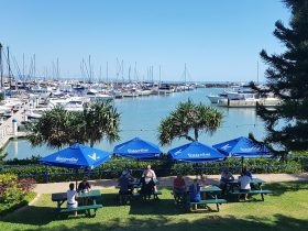 Dine on one of our absolute waterfront picnic tables. Or choose alfresco dining on the deck.