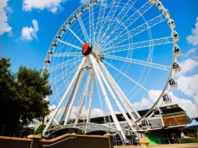 The Wheel of Brisbane from the forecourt