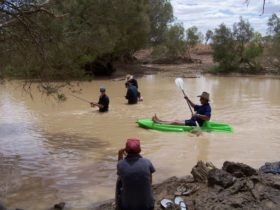 The Thomson River at Jundah is a great family attraction, for our locals and visitors alike