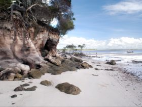 Tinnanbar, Fraser Coast, Queensland.