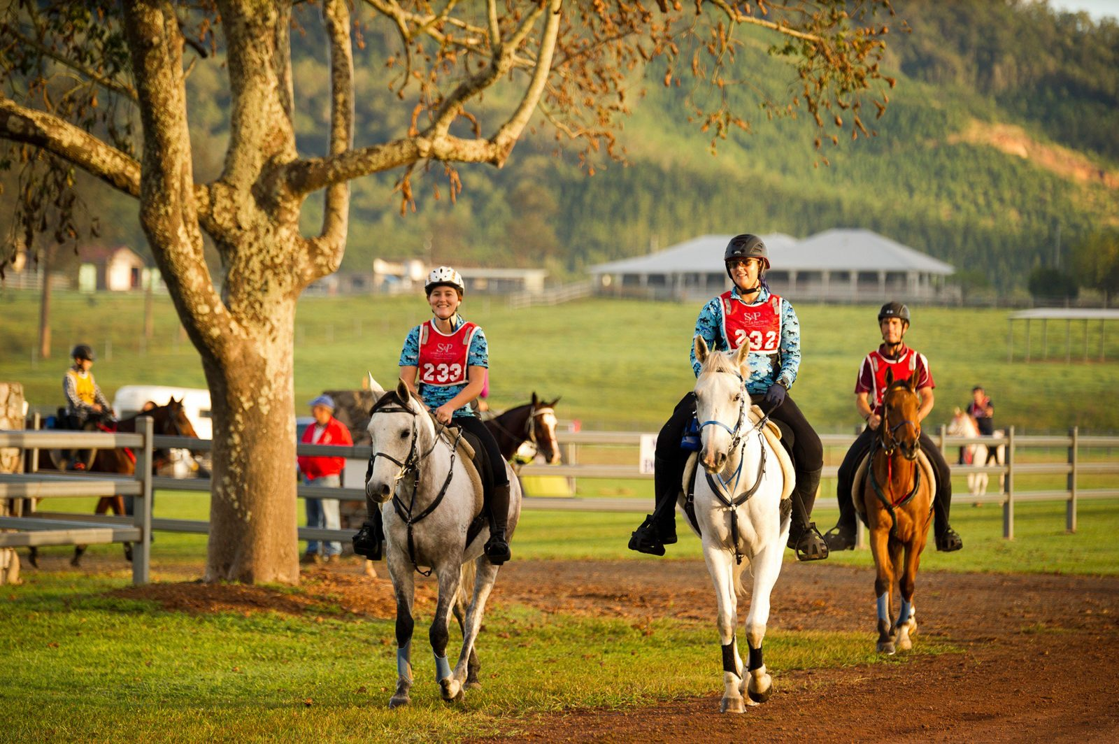 Stirlings riders
