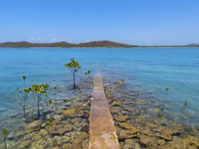 The old jetty on Roko Island pearl farm in the Torres Strait
