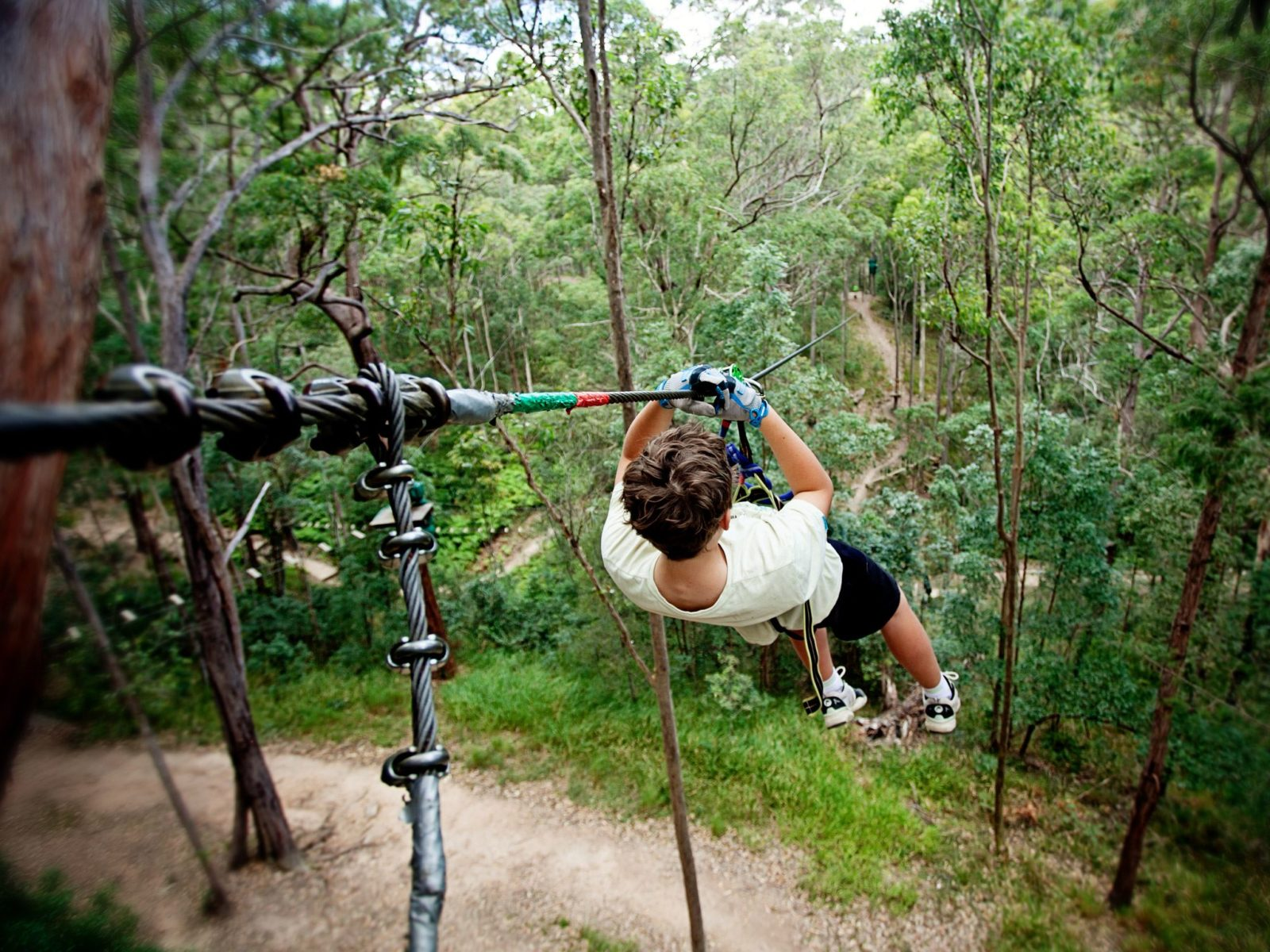 Zip Lines in Gold Coast, Brisbane and Queensland