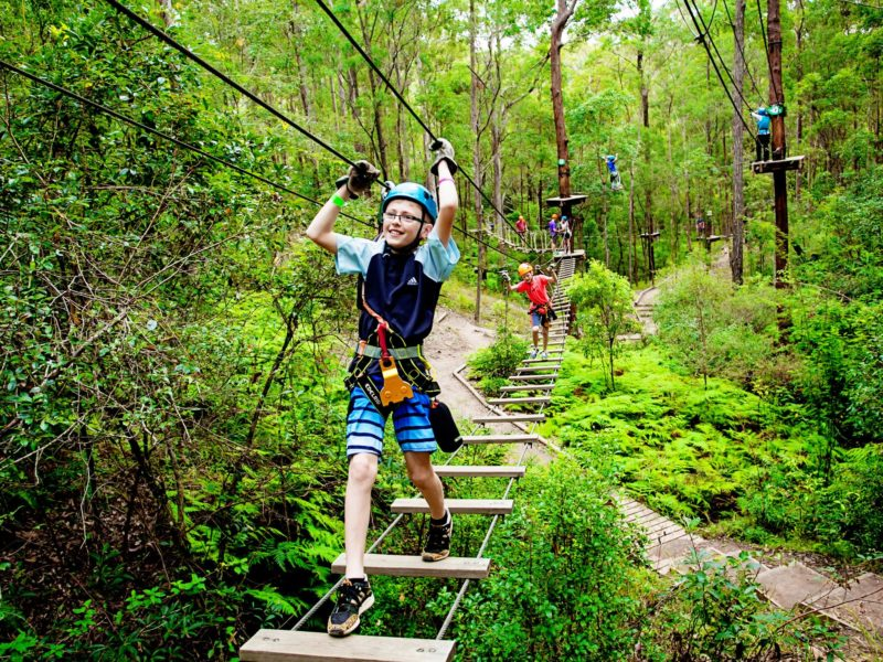 TreeTop Adventure For The Family, Gold Coast