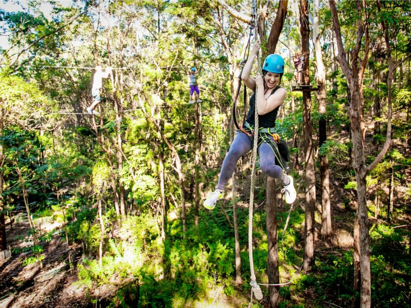Huge Tarzan Swings and TreeTop Adventures