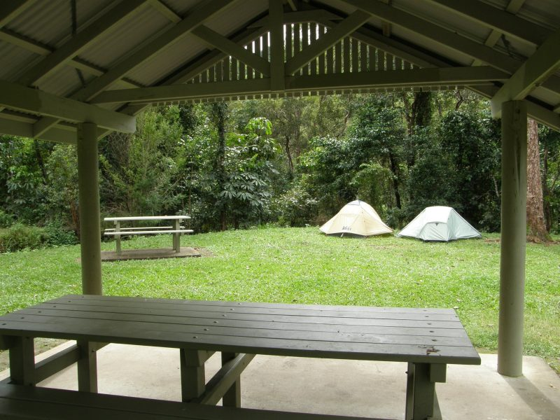 two tents are seen through a picnic shelter with rainforest backdrop.