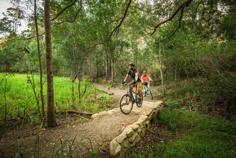 Mountain bikers on the trails of D'Aguilar National Park.