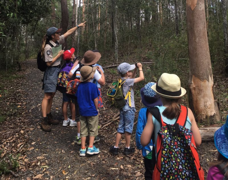 Group of children on a ranger-guided tour through forest