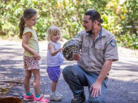 A Park Ranger has a python wrapped around his arm and is showing it to two young girls.