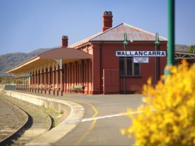 Wallangarra Station